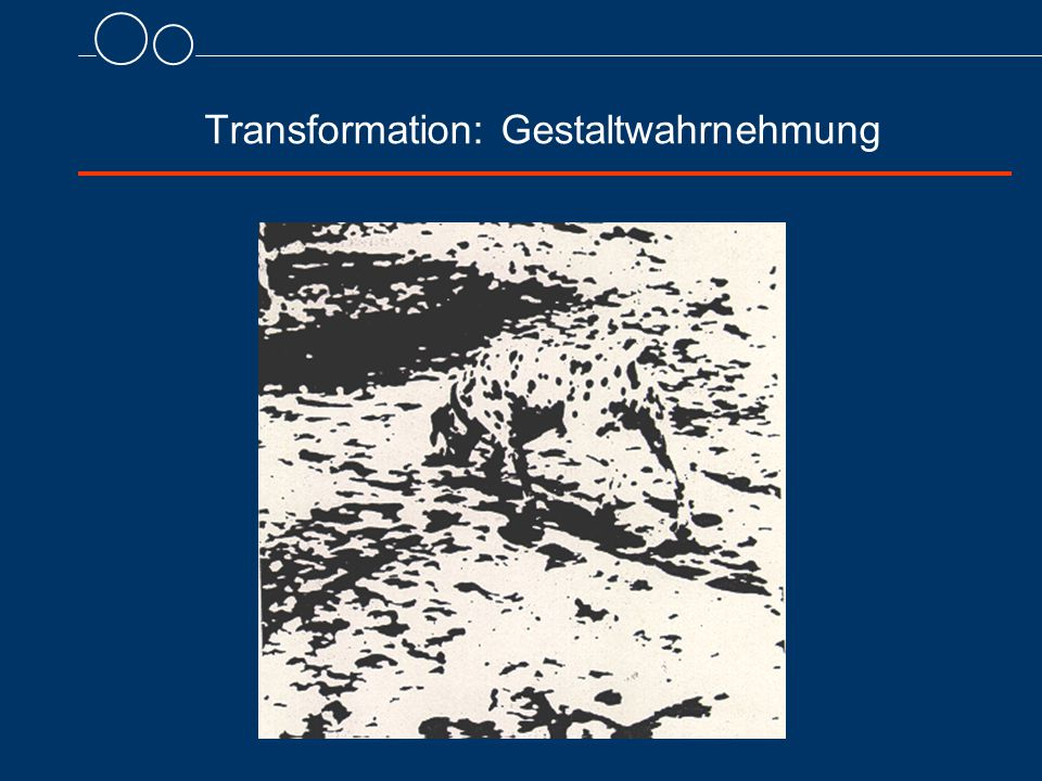 Transformation: Gestaltwahrnehmung