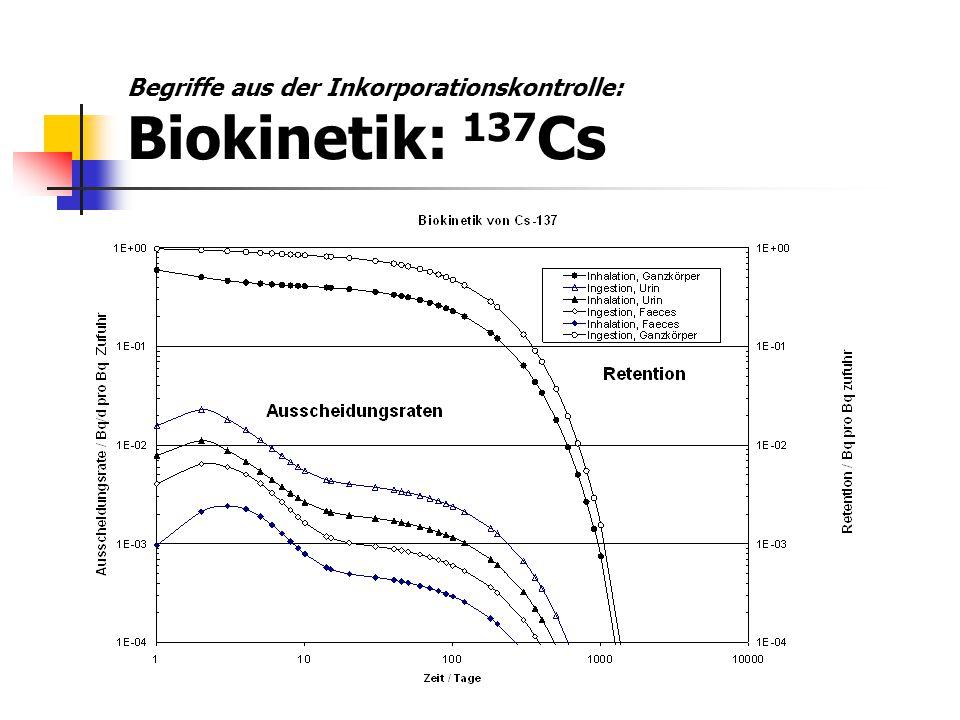 Begriffe aus der Inkorporationskontrolle: Biokinetik: 137Cs