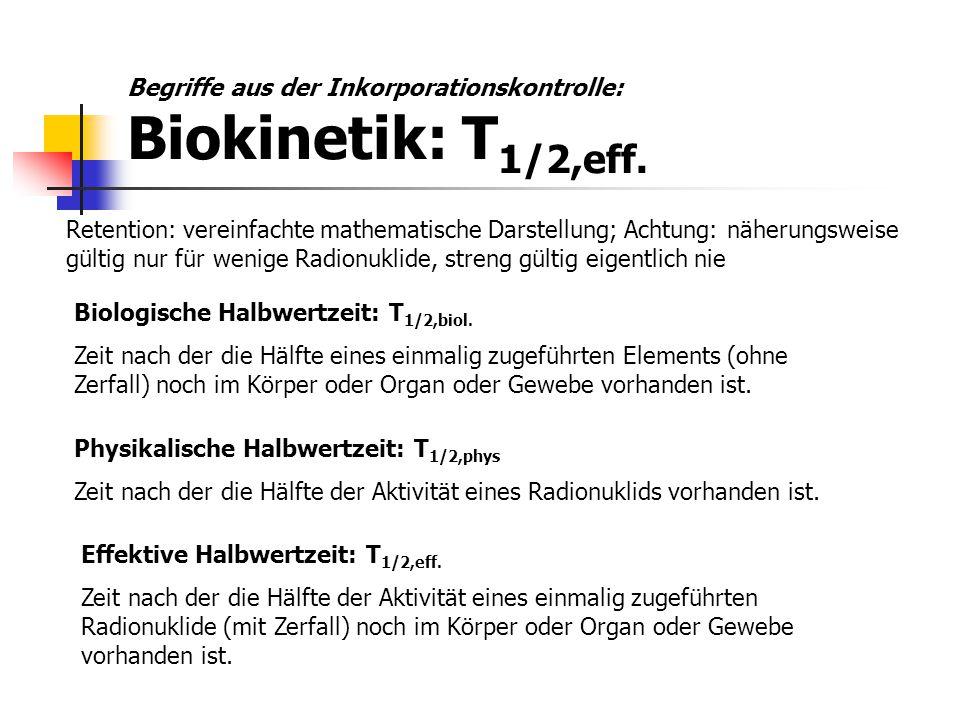 Begriffe aus der Inkorporationskontrolle: Biokinetik: T1/2,eff.
