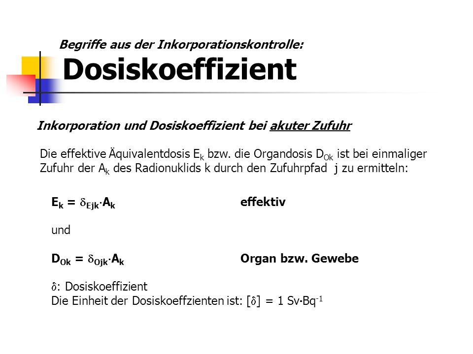 Begriffe aus der Inkorporationskontrolle: Dosiskoeffizient