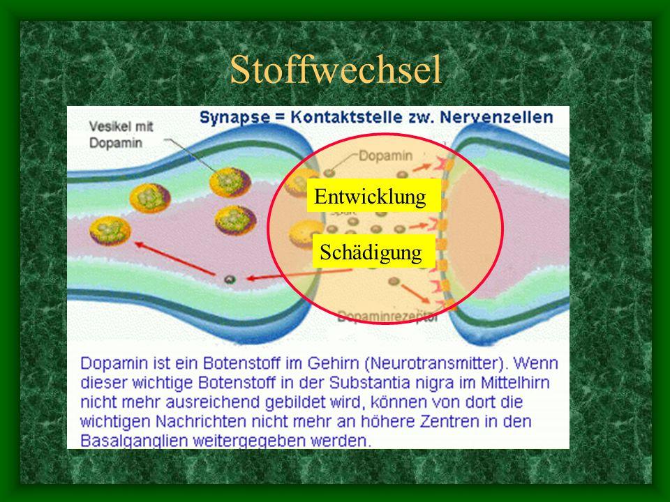 Stoffwechsel Entwicklung Schädigung