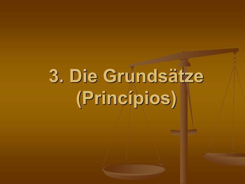 3. Die Grundsätze (Princípios)