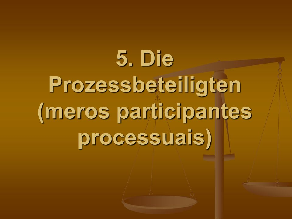 5. Die Prozessbeteiligten (meros participantes processuais)
