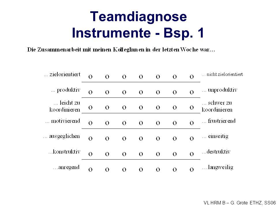 Teamdiagnose Instrumente - Bsp. 1