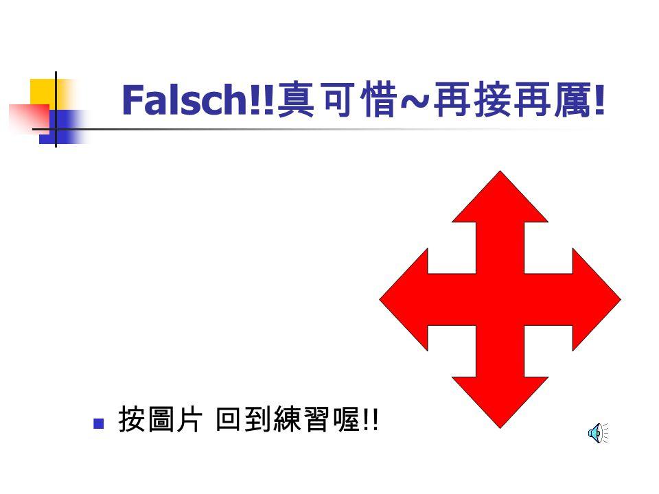Falsch!!真可惜~再接再厲! 按圖片 回到練習喔!!