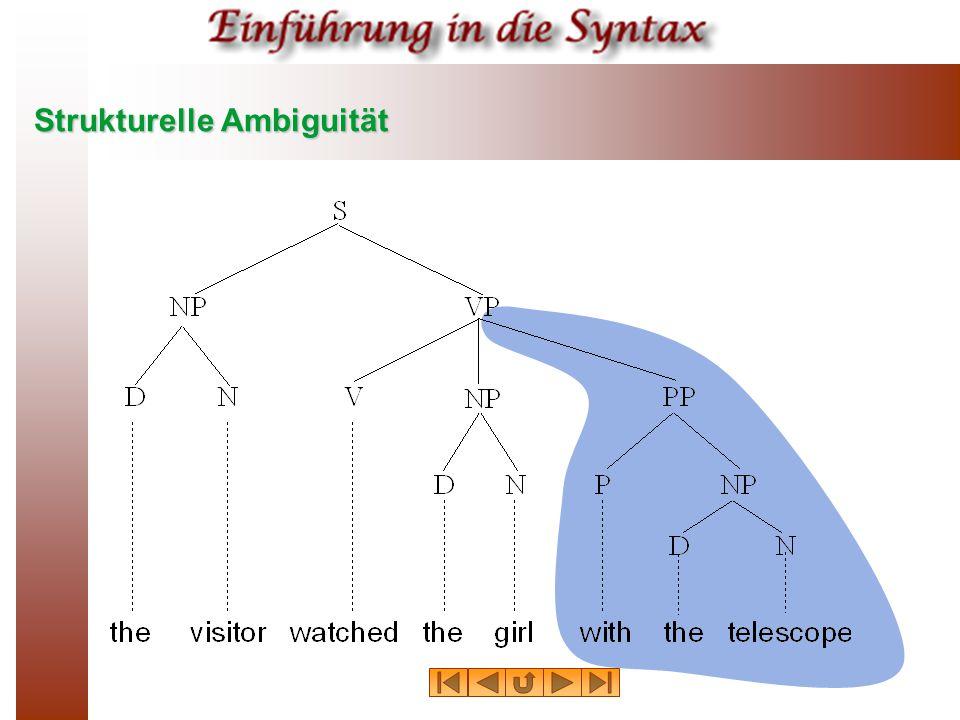 Strukturelle Ambiguität