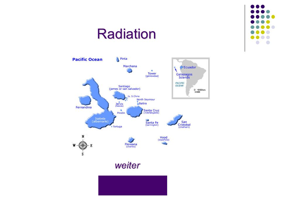 Radiation weiter
