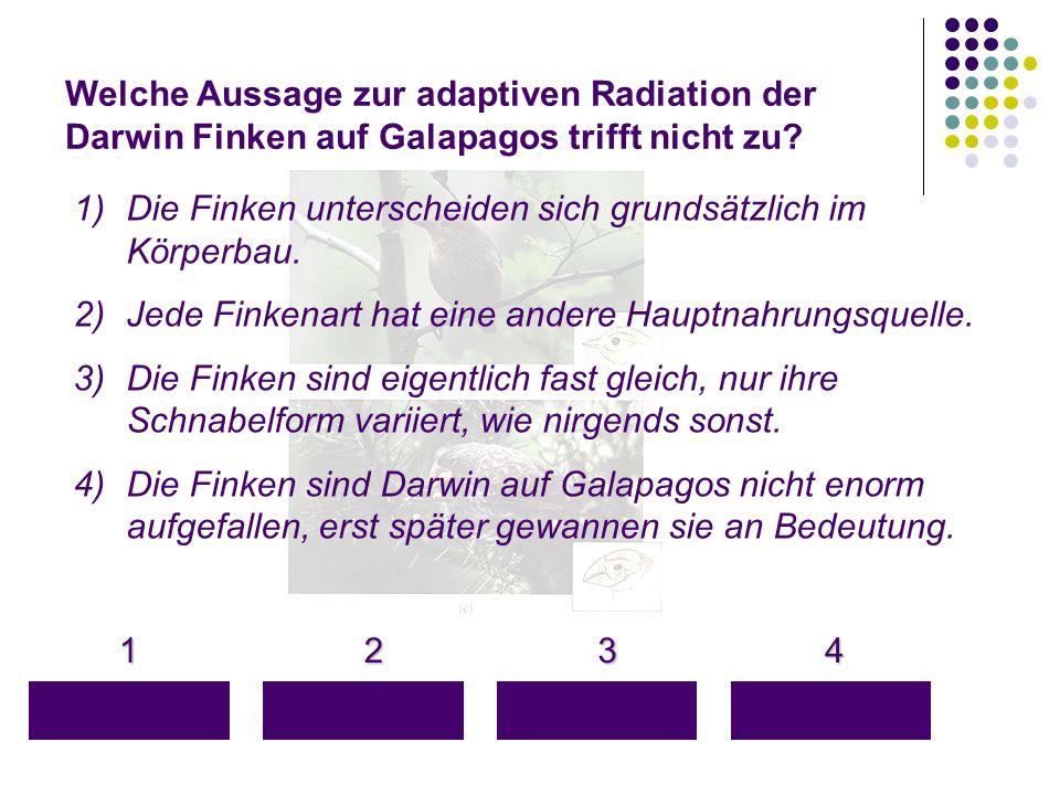 Welche Aussage zur adaptiven Radiation der Darwin Finken auf Galapagos trifft nicht zu