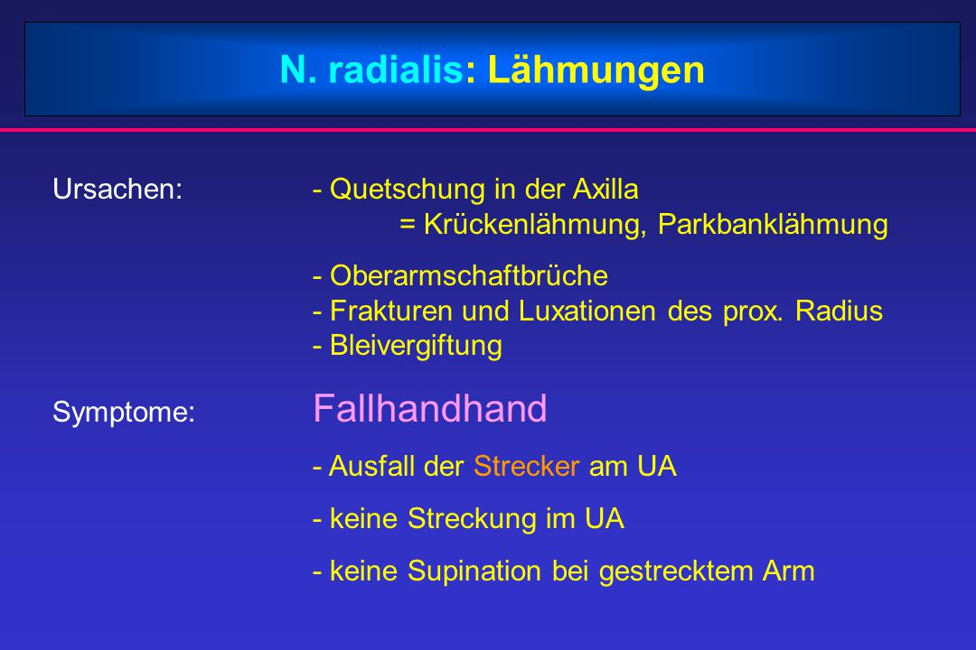 N. radialis: Lähmungen Ursachen: - Quetschung in der Axilla = Krückenlähmung, Parkbanklähmung.