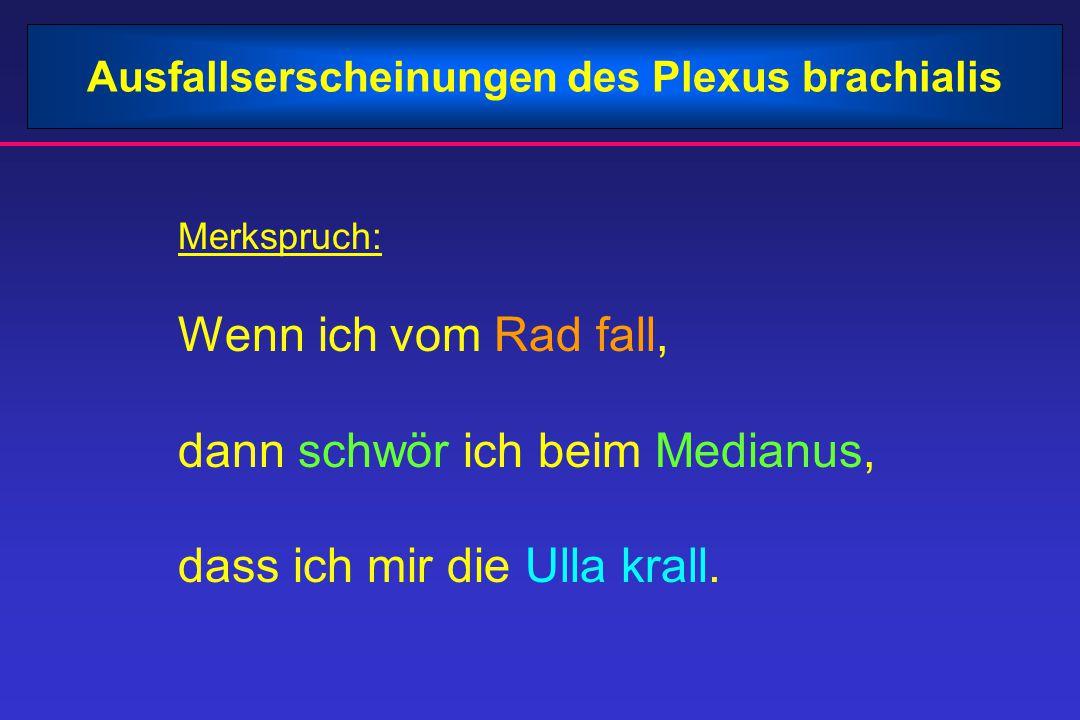 Ausfallserscheinungen des Plexus brachialis