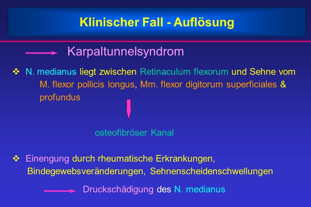 Klinischer Fall - Auflösung