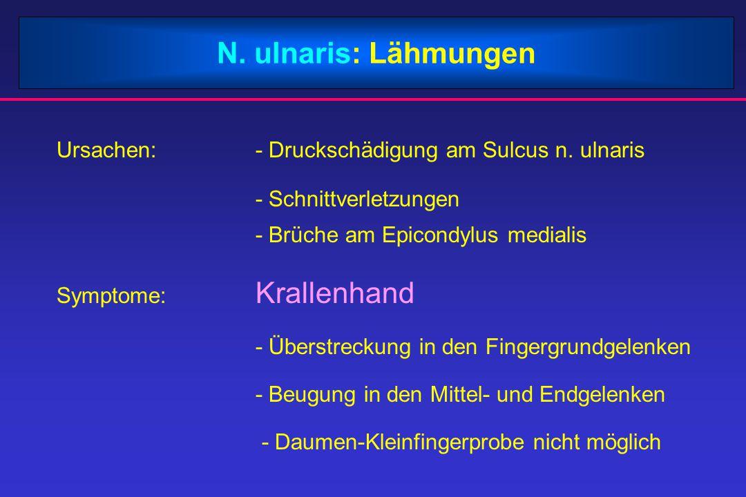 N. ulnaris: Lähmungen Ursachen: - Druckschädigung am Sulcus n. ulnaris
