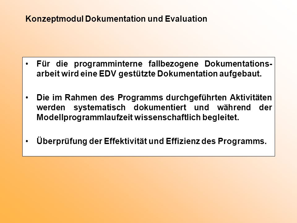 Konzeptmodul Dokumentation und Evaluation