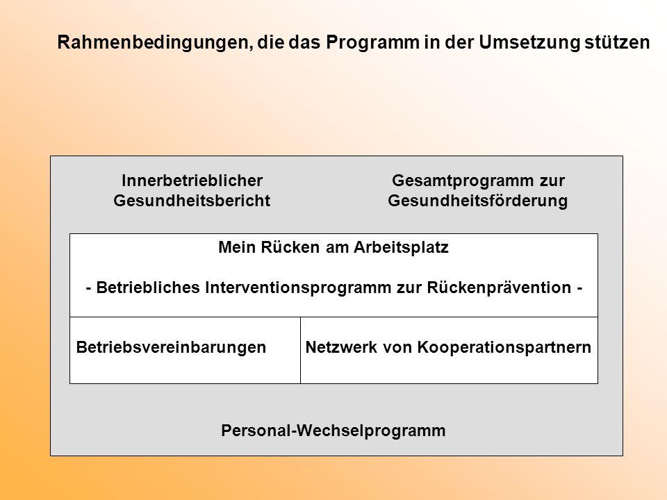 Rahmenbedingungen, die das Programm in der Umsetzung stützen