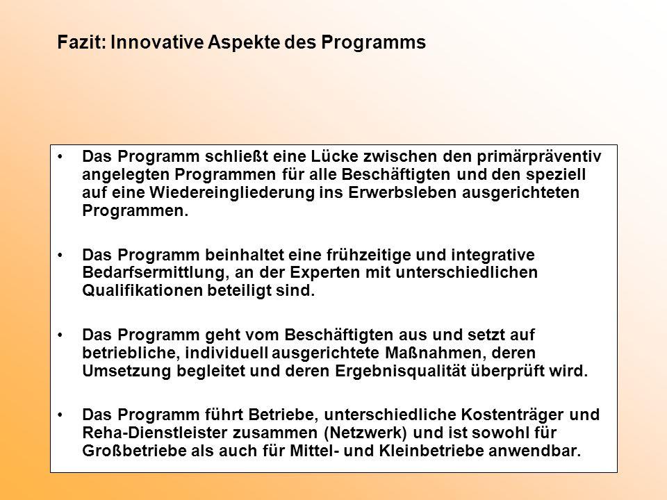 Fazit: Innovative Aspekte des Programms