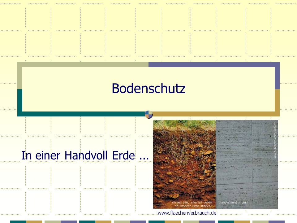 Bodenschutz In einer Handvoll Erde ... www.flaechenverbrauch.de