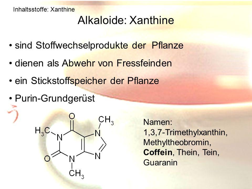Alkaloide: Xanthine sind Stoffwechselprodukte der Pflanze