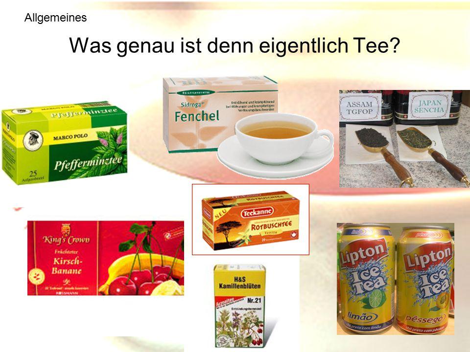 Was genau ist denn eigentlich Tee