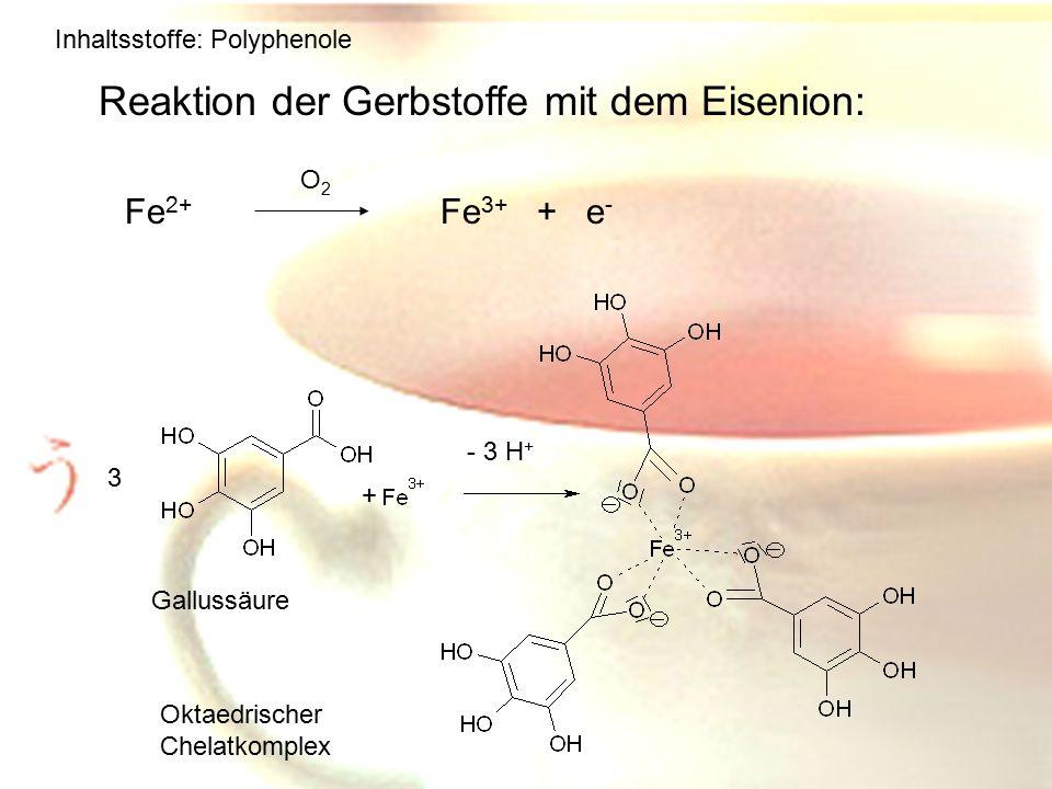 Reaktion der Gerbstoffe mit dem Eisenion:
