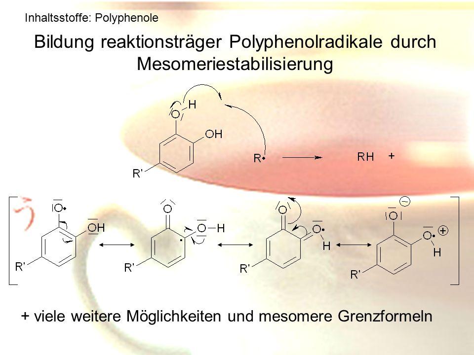 Inhaltsstoffe: Polyphenole