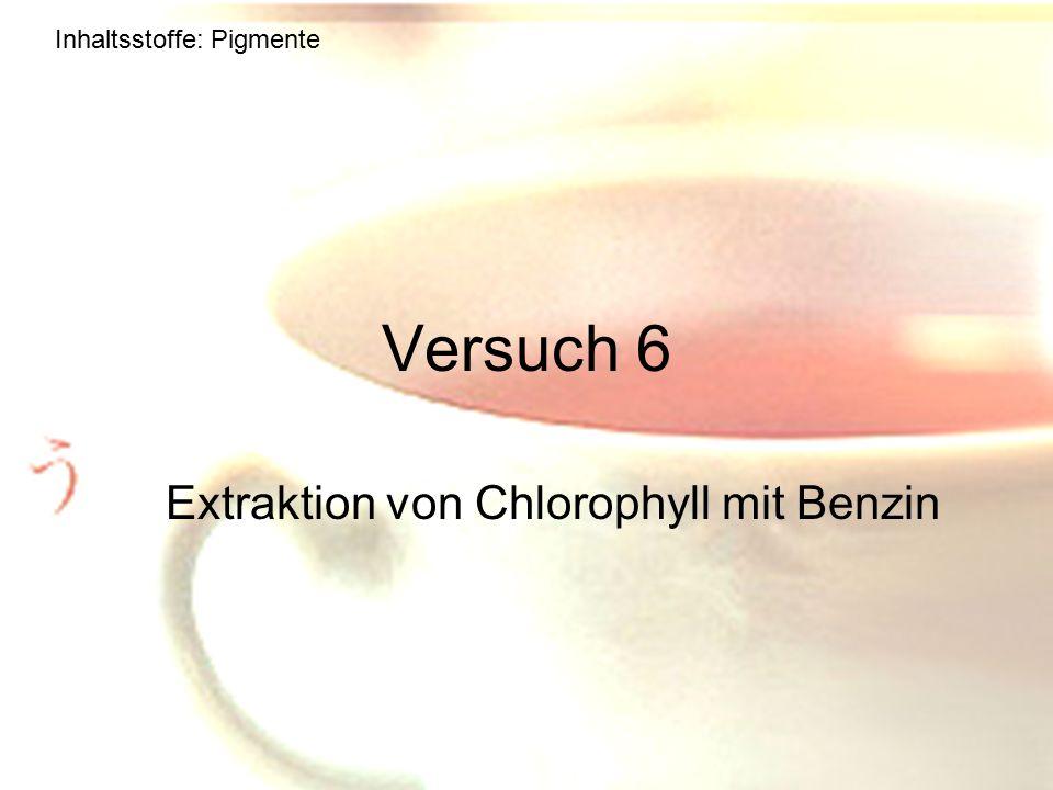 Extraktion von Chlorophyll mit Benzin