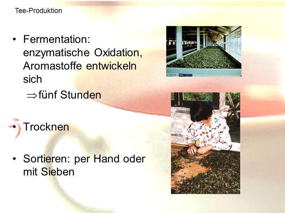 Fermentation: enzymatische Oxidation, Aromastoffe entwickeln sich
