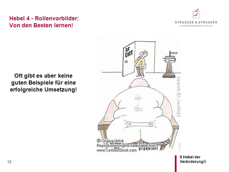Hebel 4 - Rollenvorbilder: Von den Besten lernen!