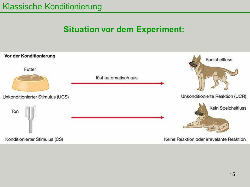 Situation vor dem Experiment: