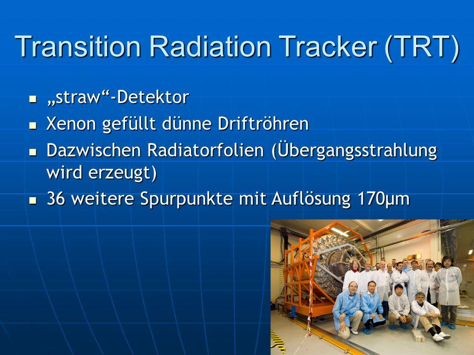 Transition Radiation Tracker (TRT)