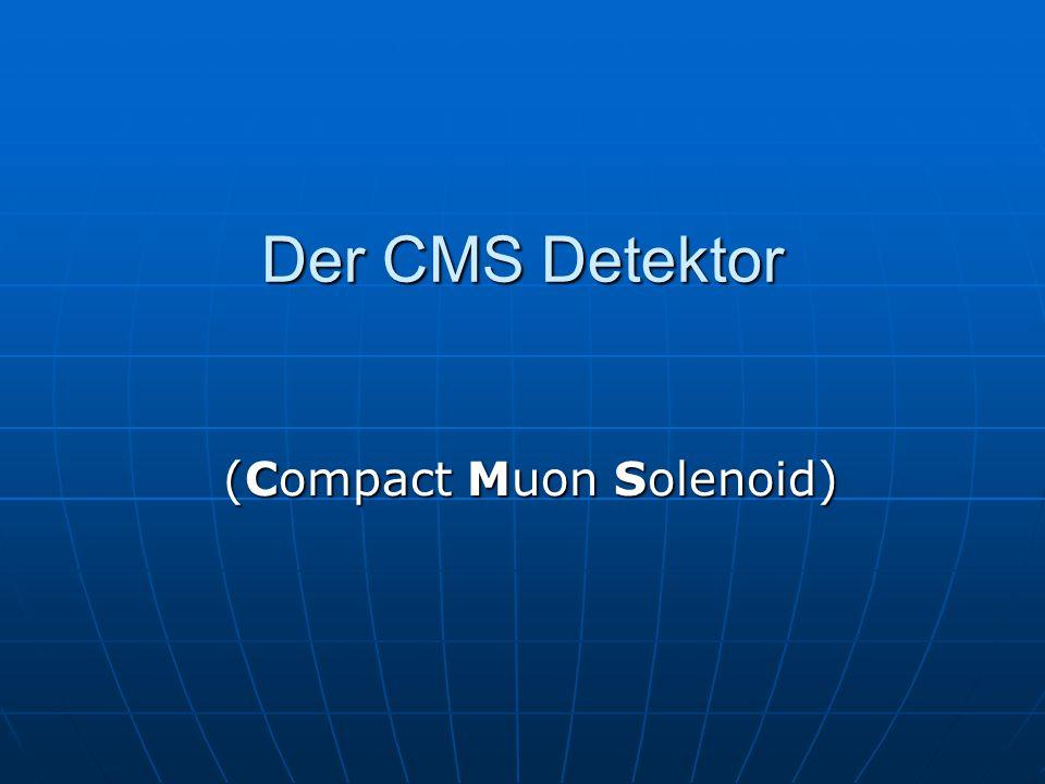 (Compact Muon Solenoid)