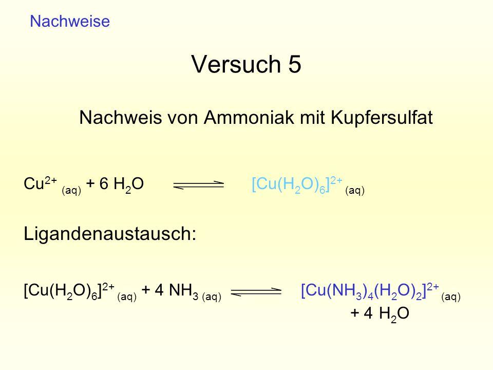Versuch 5 Nachweis von Ammoniak mit Kupfersulfat Ligandenaustausch: