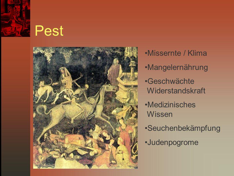 Pest Missernte / Klima Mangelernährung Geschwächte Widerstandskraft