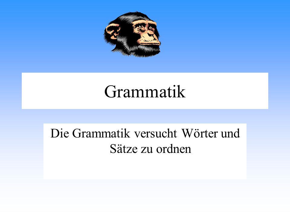 Die Grammatik versucht Wörter und Sätze zu ordnen
