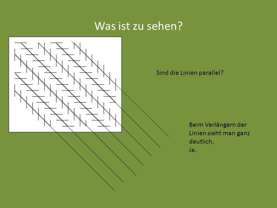 Was ist zu sehen Sind die Linien parallel