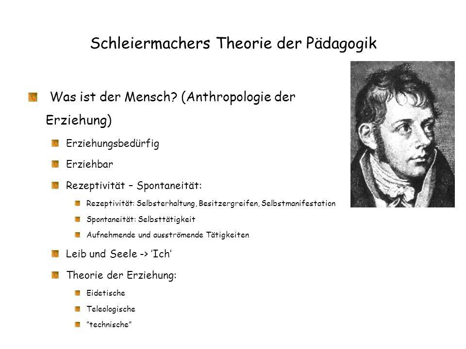 Schleiermachers Theorie der Pädagogik