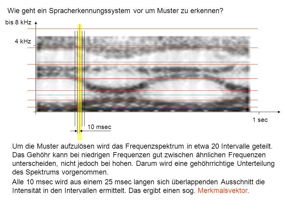 Wie geht ein Spracherkennungssystem vor um Muster zu erkennen