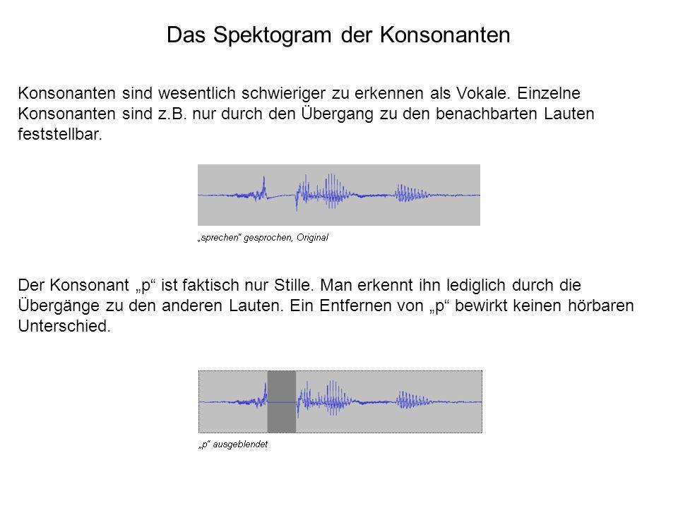 Das Spektogram der Konsonanten