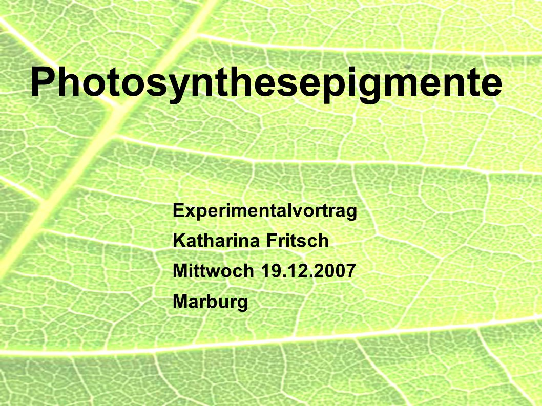 Photosynthesepigmente