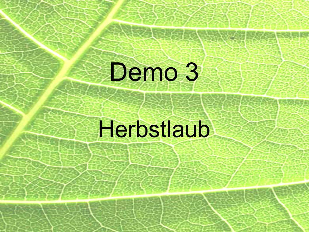 Demo 3 Herbstlaub