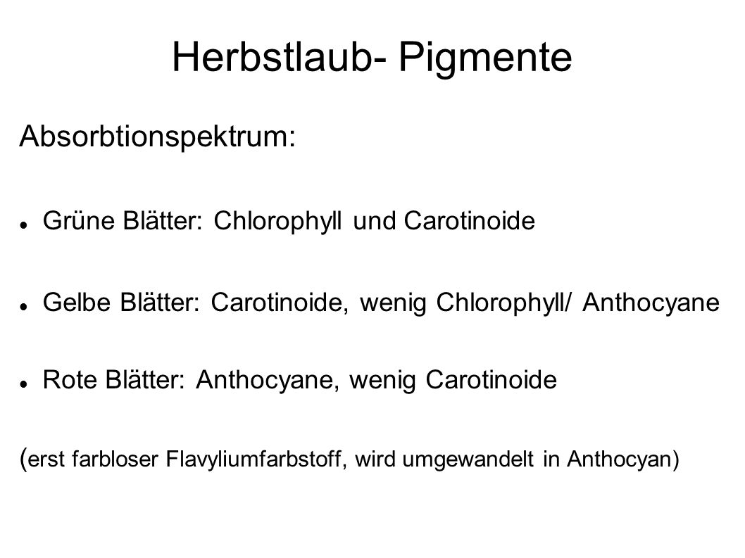 Herbstlaub- Pigmente Absorbtionspektrum: