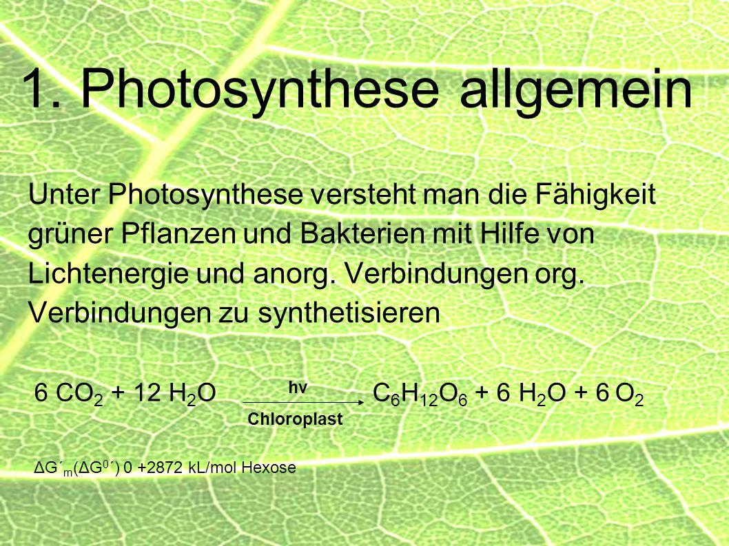1. Photosynthese allgemein