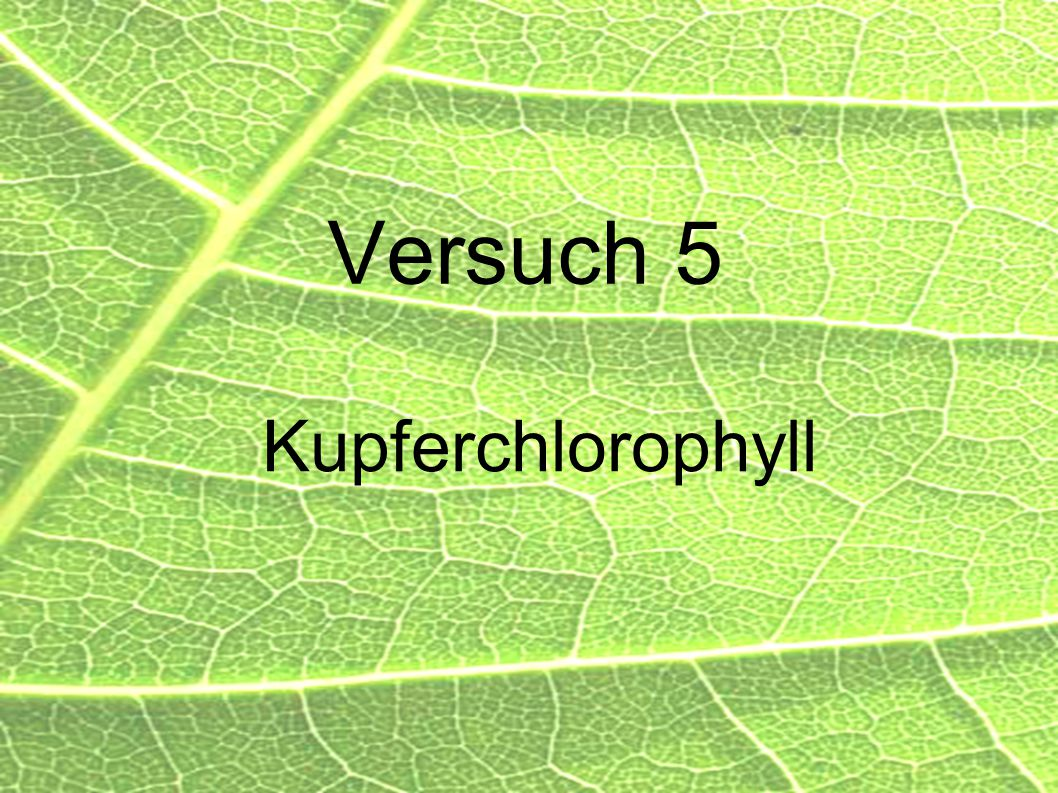 Versuch 5 Kupferchlorophyll