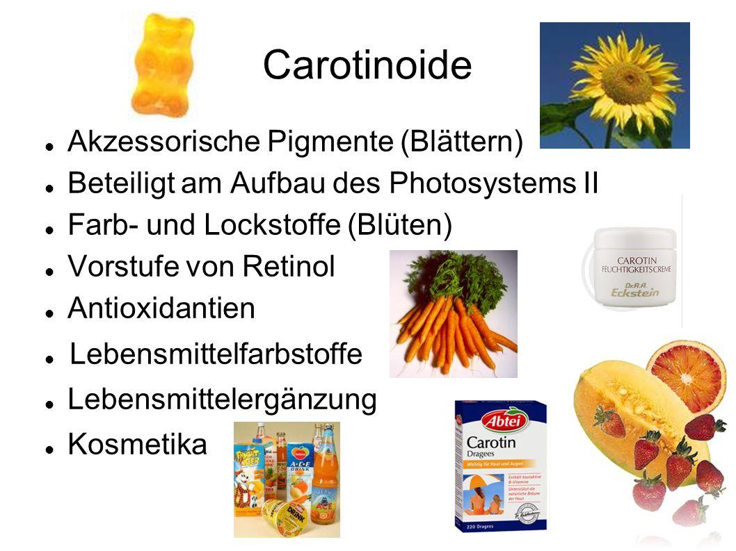 Carotinoide Akzessorische Pigmente (Blättern)