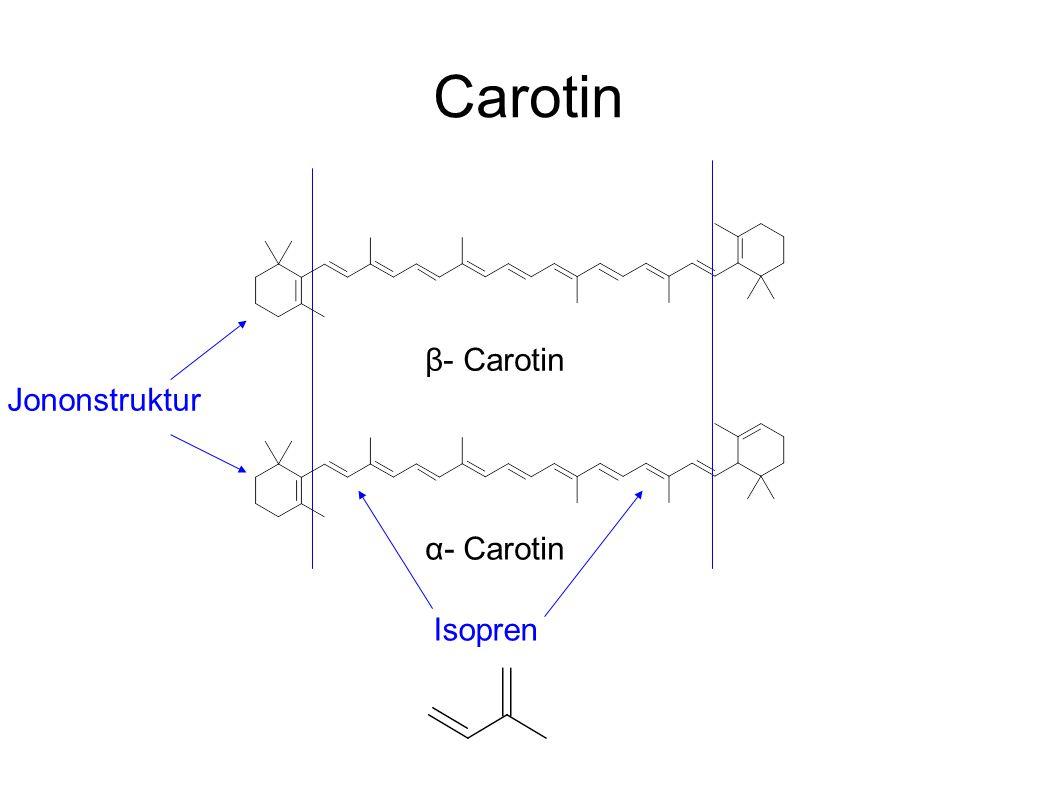 Carotin β- Carotin Jononstruktur α- Carotin Isopren