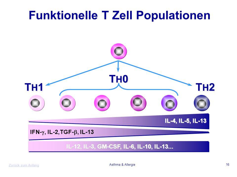 Funktionelle T Zell Populationen
