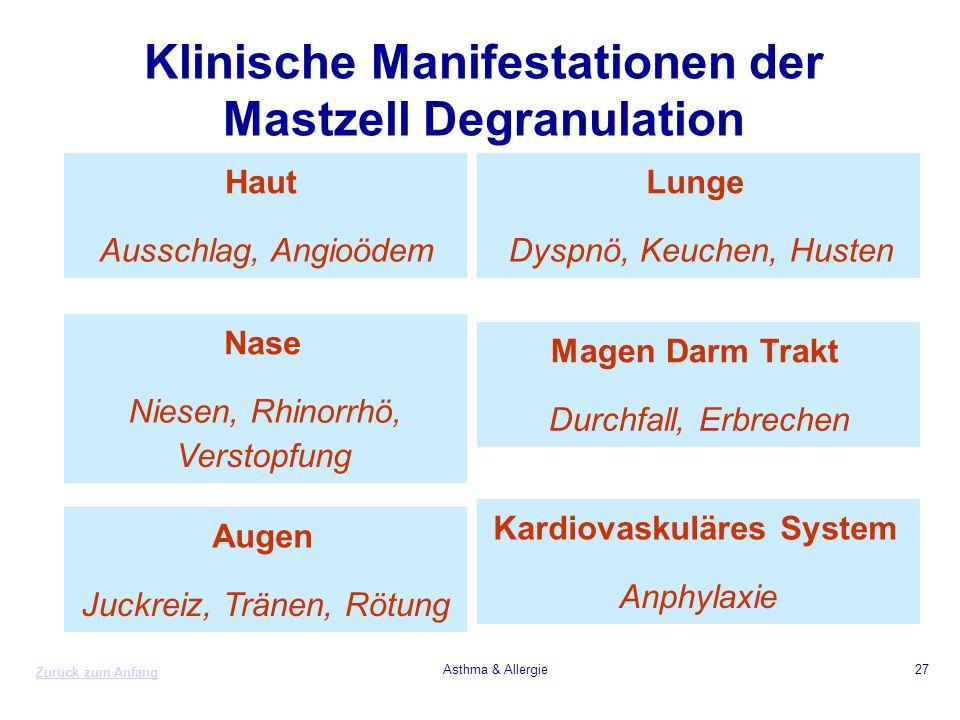 Klinische Manifestationen der Mastzell Degranulation
