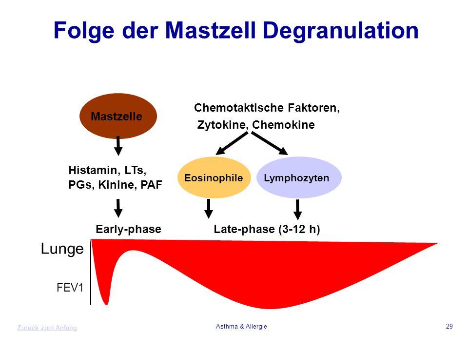 Folge der Mastzell Degranulation