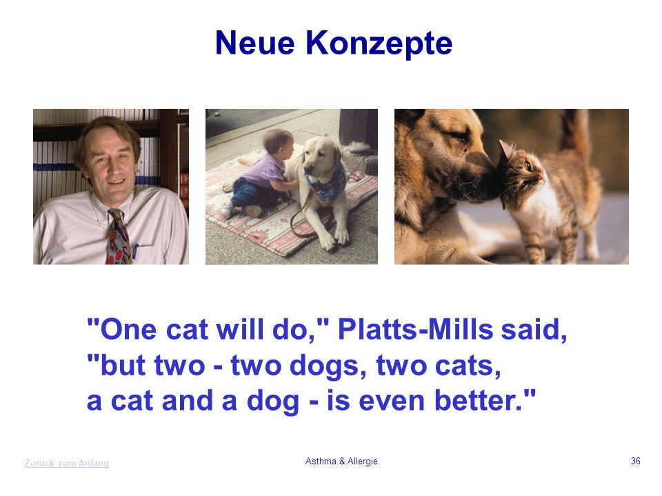 Neue Konzepte One cat will do, Platts-Mills said,