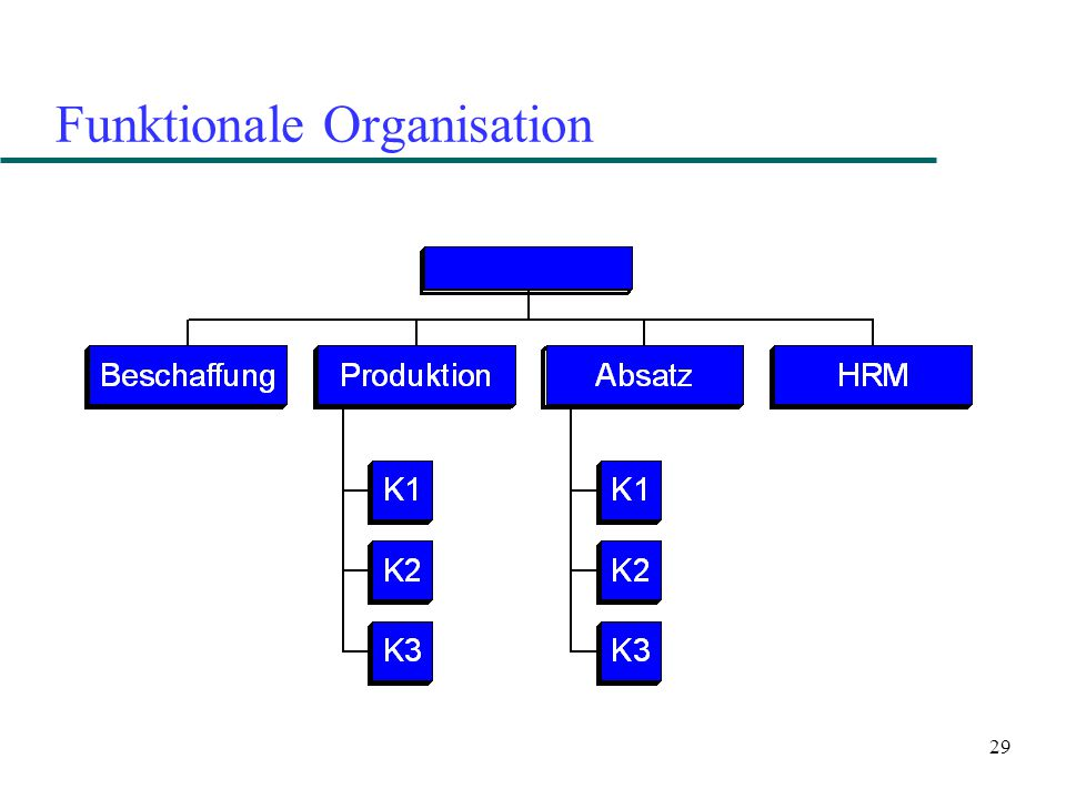 Funktionale Organisation