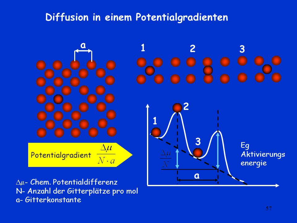 Diffusion in einem Potentialgradienten